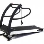 Treadmill Testing